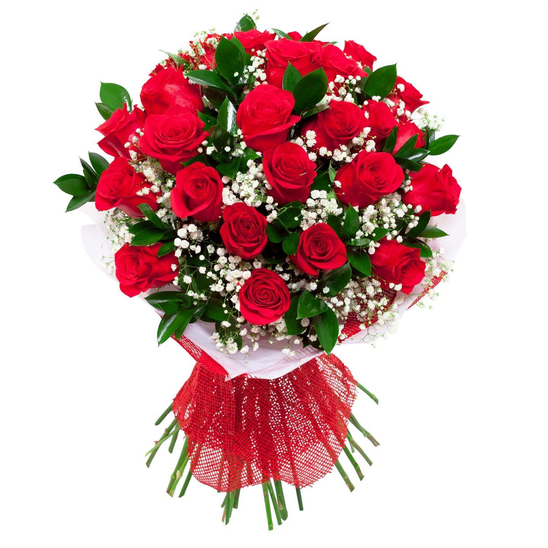 24 Rosas Rojas largas