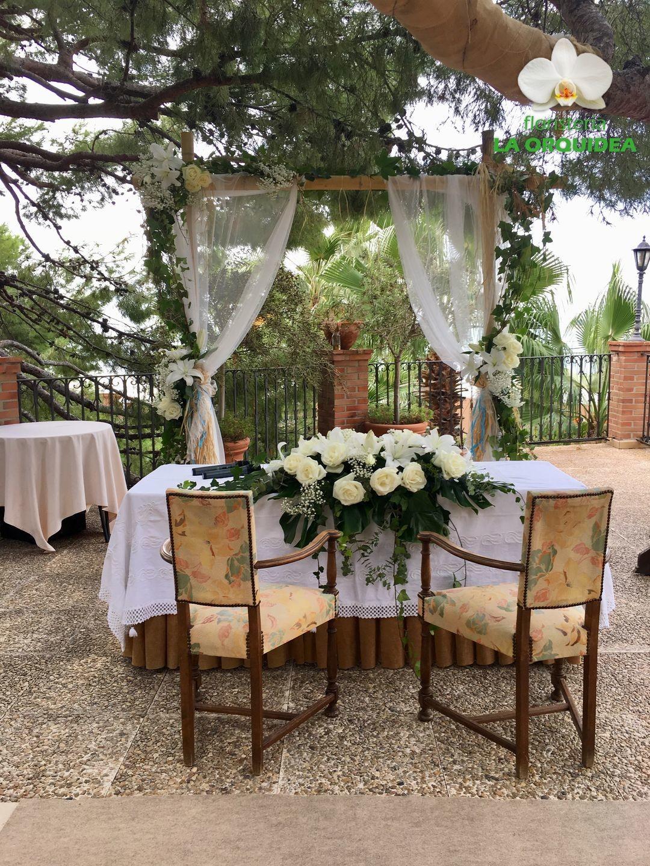 boda patricia